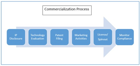 Commercialization Process